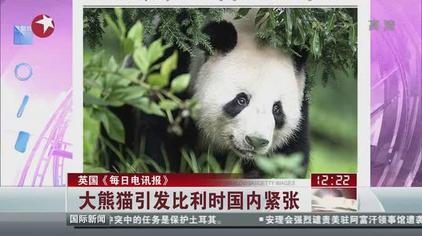 英国《每日电讯报》:大熊猫引发比利时国内紧张