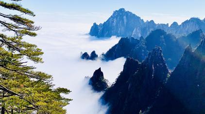 冬日黄山精编 近一个月未见太阳 这时来到山上恍入仙境虚无缥缈