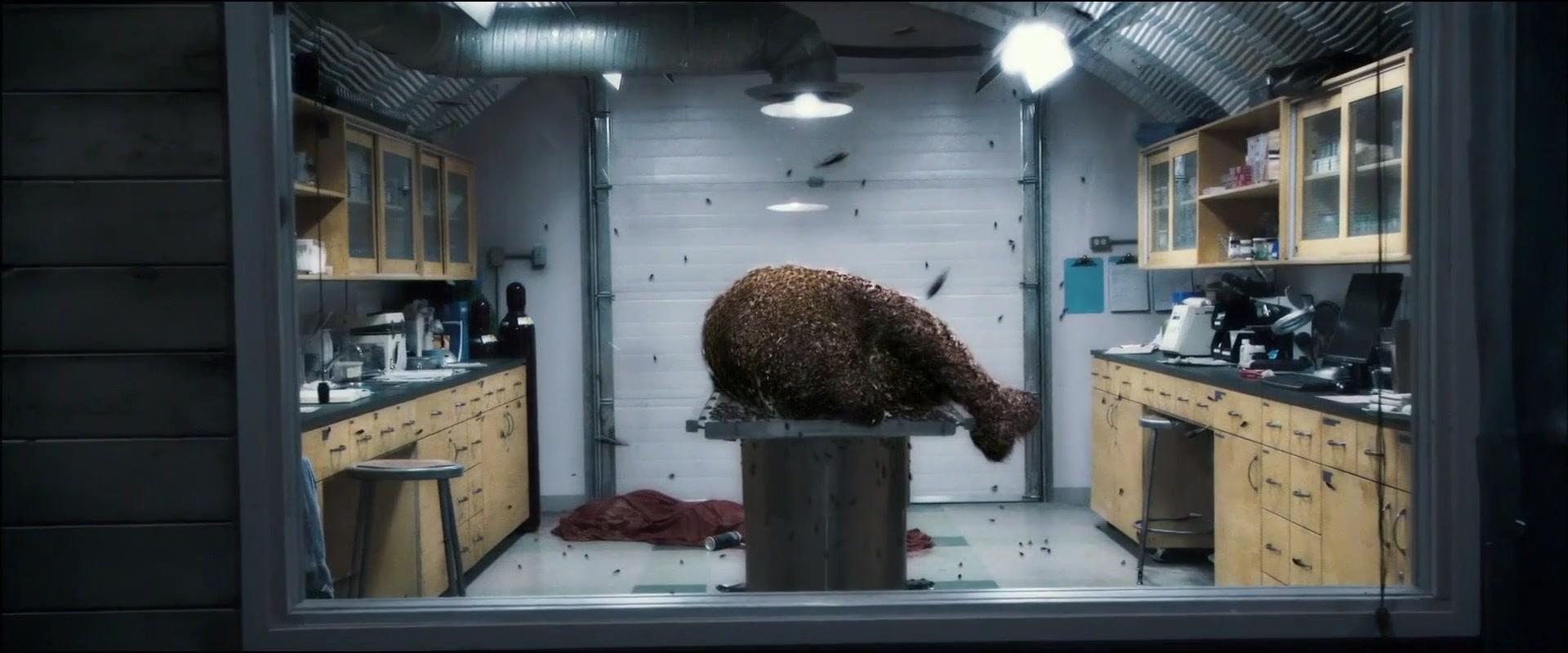 北极熊乱吃东西,被寄生后......